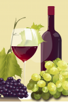 Wein Illustration